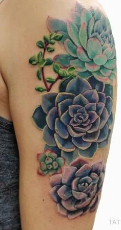 891ea0eb42c0b Succulent Tattoo, Cactus Tattoo, Plant Tattoo, Floral Arm Tattoo, Flower  Tattoos,