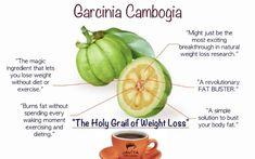 Garcinia Cambogia is an excellent nutrient for weight loss! #Javita #GreenTea #leanandgreen #blend #cup #instant #healthy #health #healthyliving #weightloss #burnfat #energy #goodforyou #tastesgood #garciniacambogia #cutcravings #allnatural #natural #love #live #life #fresh #onice #hot  #finestingredients #switchtojavita #longisland #newyork #drink #beverage #body #mind #memory #jumpstart #energize #gymnemasylvestre #fuel #sweet #balance #beneficial #loveyourbody #vita #java #change
