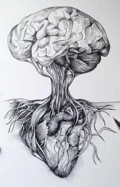 Brain connected to Heart Biology Drawing, Sketches, Art Tattoo, Drawings, Anatomy Art, Brain Art, Art Ink, Heart Art, Dark Art Drawings