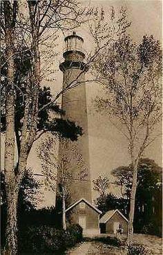 Chincoteague Virginia VA Assateague Lighthouse Collectible Vintage Postcard