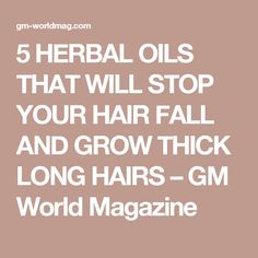 5 HERBAL OILS THAT WILL STOP YOUR HAIR FALL AND GROW THICK LONG HAIRS – GM World Magazine