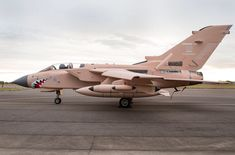 RAF Tornado painted in Gulf War paint scheme in honour of the aircraft types 25 years service since then. Air Force Aircraft, Fighter Aircraft, Fighter Jets, Nose Art, Royal Air Force, Aircraft Carrier, Military Art, Royal Navy, Military Aircraft