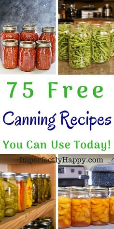 Dill Pickle Recipe Free Canning Recipes – for canning meat, jelly, jams, fruit, condiments and more. Beginning canning and experienced canning – recipes everyone will enjoy. Pressure Canning Recipes, Home Canning Recipes, Canning Tips, Pressure Cooking, Chili Canning Recipe, Canning Soup, Canning Pears, Canning Salsa, Chutney