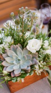 Succulent center pieces for a gorgeous rustic or ecclectic wedding. Colors used: white, green and tans. I love the added wheat!