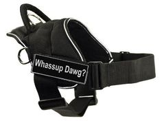 DT Fun Works Harness, Blind Dog, Black with Reflective Trim, XX-Small - Fits Girth Size: to *** Details can be found by clicking on the image. (This is an affiliate link and I receive a commission for the sales) Dog Harness, Dog Leash, Emotional Support Animal, Cat Training Pads, Dog Training, Training Tips, Cat Shedding, Cat Fleas, Guide Dog