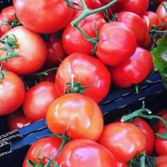 We're rocking some seriously good Truss tomatoes at the moment.  Available online and at our markets this weekend.  Free next day delivery on all orders > $129 Google OneTable Tomatoes, Delivery, In This Moment, Google, Instagram Posts, Free, Inspiration, Biblical Inspiration, Inspirational