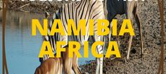 10 Reasons to Visit Namibia South Africa