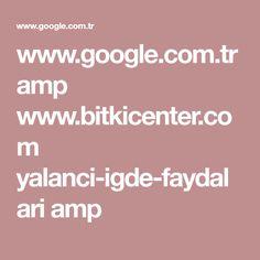 www.google.com.tr amp www.bitkicenter.com yalanci-igde-faydalari amp