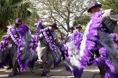 amazing feather costumes