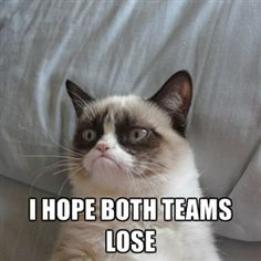 Happy Super Bowl from Grumpy Cat. I don't even really like cats, but these make me laugh.