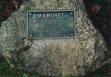 """In 1750 in the royal burial ground of the Mohegans Indians in Norwich, CT one of the memorial state's """"In memory of  Elizabeth Joquib, the daughter of Mahomet, great-grandchild to the first Uncas, great sachem of Mohegan, who died July 5th, 1740 at 38 years old. Mamohet was the rightful heir of Qwenoco but Ben, the youngest son of Uncas, of illegitimate birth, succeeded Caesar, the successor as sachem after Owenoco."""