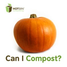 Pumpkins are fast to compost in the #HOTBIN and the seeds wont survive the heat either. | #compost #foodwaste   http://www.hotbincomposting.com/blog/composting-fruit-and-vegetables.html
