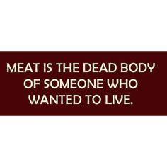 Go vegetarian or vegan. C'mon folks, step into the century. Animals are not edible. They're flesh and blood and souls. Vegetarian Quotes, Vegan Quotes, Going Vegetarian, Going Vegan, Vegan Vegetarian, Reasons To Go Vegan, Why Vegan, Up Book, Vegan Animals