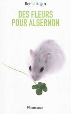 Tribal - Des fleurs pour Algernon - Flammarion editions