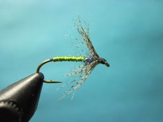 Partridge and Olive Soft Hackle