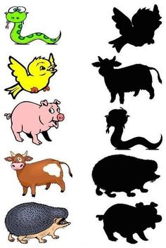 Dopasuj cień: Zwierzęta 5