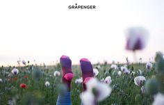 Socks in Poppy Field | GRÅPENGER #premium #colorful #socks #stripes #blue #bordo #magenta #poppy