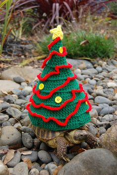 1000+ images about Turtle Sweaters on Pinterest Tortoise, A turtle and Turtles
