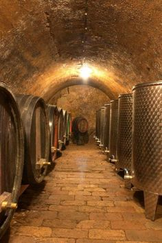 I'd love to have a Wine Cellar in the basement like this one. Loving the stone and the curvature ceiling.