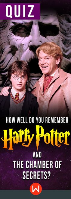 Quiz: How Well Do You Remember Harry Potter And The Chamber Of Secrets? Harry Potter Quiz, Harry Potter Quotes, Harry Potter World, Harry Potter Characters, Marvel Quiz, Harry Potter Trivia Questions, Trivia Quiz, Chamber Of Secrets, The Secret