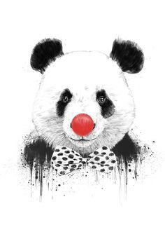 Balázs Solti - Clown Panda