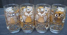 Brown Owl Drinking Glasses - Cabootle
