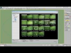 Forest Pack features - Library Browser - YouTube