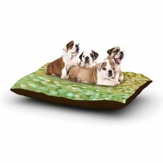 """Alison Coxon """"Gold And Mint Sparkle"""" Gold Bokeh Dog Bed"""