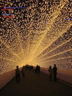 A tunnel of lights in Japan. Japanese Resorts Tunnel of Lights. million LED's Oh The Places You'll Go, Places To Travel, Travel Destinations, Places To Visit, Dream Vacations, Vacation Spots, Japan Photo, To Infinity And Beyond, Future Travel