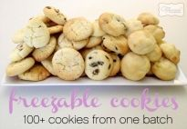 100+ cookies from 1 mix » The Organised Housewife