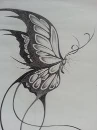Image result for flying butterfly drawings in pencil