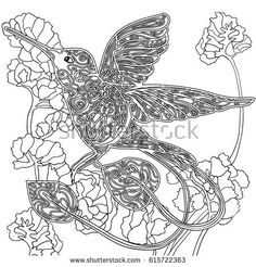 hummingbird flower coloring pages ruby throated to print book page for adult - Hummingbird Flower Coloring Pages