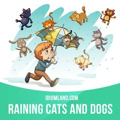 """It's raining cats and dogs"" means ""it's raining very heavily"". Example: The…"