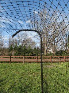 Gatos em Casa: Telas em quintal para evitar fugas