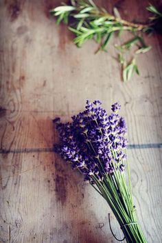 lavender and rosemary, two great scents