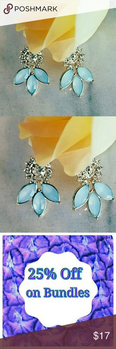 NEW Gorgeous Crystal Blue Tear Drop Earrings NEW Gorgeous Crystal Blue Tear Drop Earrings    . Size 1  . Condition New   . Style Tear Drop  . Color Light Blue   No additional shipping charge when you purchase more from my closet   Every purchase will be packed with Care & a Special FREE GIFT 🎁   🍍 25% OFF ON BUNDLES   Inventory #167 Jewelry Earrings