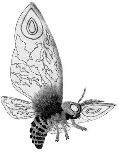 This is the same pose used for the original Mothra. Kaiju Re-imagined: Mothra Leo / Rainbow Mothra Mothra Movie, Make Art, Godzilla, Horror Movies, Rainbow, Deviantart, Demons, Monsters, Studios