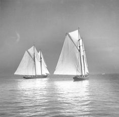 "lazyjacks: ""Grand Bank fishing schooners Bluenose and Columbia racing during International Fishing Schooner Races W. MacAskill Nova Scotia Archives accession no. Fishing Vessel, Ship Drawing, Plywood Boat, Float Your Boat, Canadian History, Tug Boats, Boat Rental, Boat Design, Small Boats"