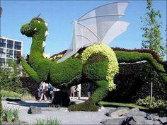 Resultados da Pesquisa de imagens do Google para http://www.pictime.com.br/wp-content/uploads/2011/05/www.jardineria.pro_.wp-content.uploads.2010.03.Poda-topiaria.jpg