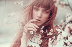 Cherry Blossom Girl by AlessioAlbi