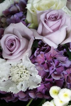 Purple hydrangea, lilac roses and white scabious