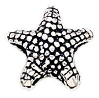 Here's my starfish bead.