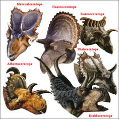 So many different horned dinosaurs. Newly described fossil teeth might tell palaeontologists where horned dinosaurs preferred to live. Names Of Dinosaurs, Jurassic World Dinosaurs, Jurassic Park World, Prehistoric Wildlife, Prehistoric World, Prehistoric Creatures, Dinosaur Funny, Dinosaur Art, Dinosaur Sketch
