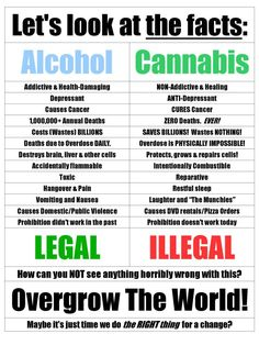Alcohol vs Marijuana