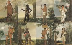 Brasileiros no período colonial (Brazilians in colonial age). Albert Eckhout, Black History, Art History, Indigenous Tribes, Dutch Artists, African Men, Ancient Civilizations, Western Art, National Museum