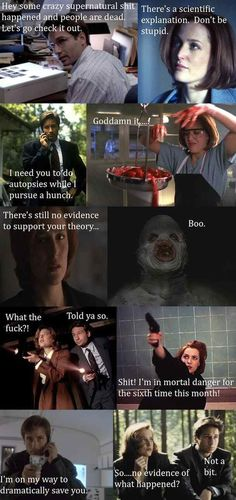 The X-Files basic storyline
