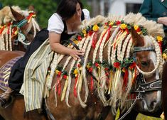 A woman rides a decorated horse to obtain blessings for men and beasts at the St. George church near Traunstein, southern Germany, on Monday, April The traditional procession has been held on Easter Monday for over 300 years. Horse Mane Braids, Horse Braiding, Shire Horse, Horse Tail, Horse Costumes, Halloween Costumes, Most Beautiful Horses, Mane N Tail, Holy Week