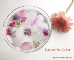 Ice cube blossoms sounds cute but do you really want flowers floating around in your drink? Edible Flowers Uk, Flower Ice Cubes, Diy Party, Party Ideas, Living On A Budget, Clotted Cream, Crafty Craft, Prosecco, Afternoon Tea