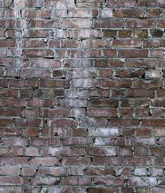 concrete wall by tom haga
