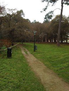 bebetecavigo. Maravillosos paseos disfrutando de la naturaleza en medio de la ciudad. Parque de A Bouza, Vigo